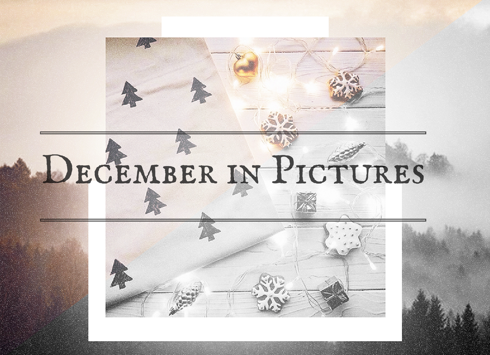 december-in-pictures